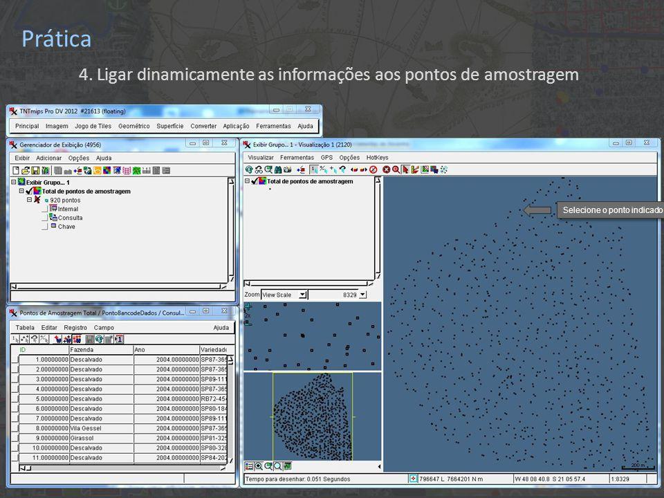 Prática 4. Ligar dinamicamente as informações aos pontos de amostragem Selecione o ponto indicado