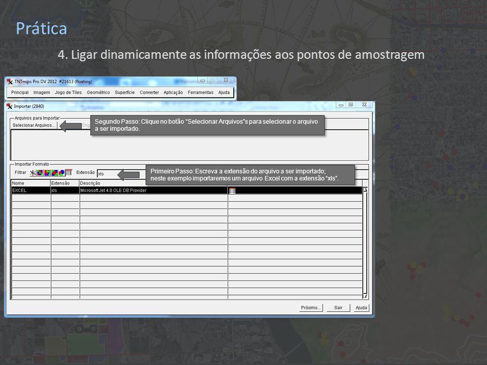 Prática 4. Ligar dinamicamente as informações aos pontos de amostragem Primeiro Passo: Escreva a extensão do arquivo a ser importado; neste exemplo im