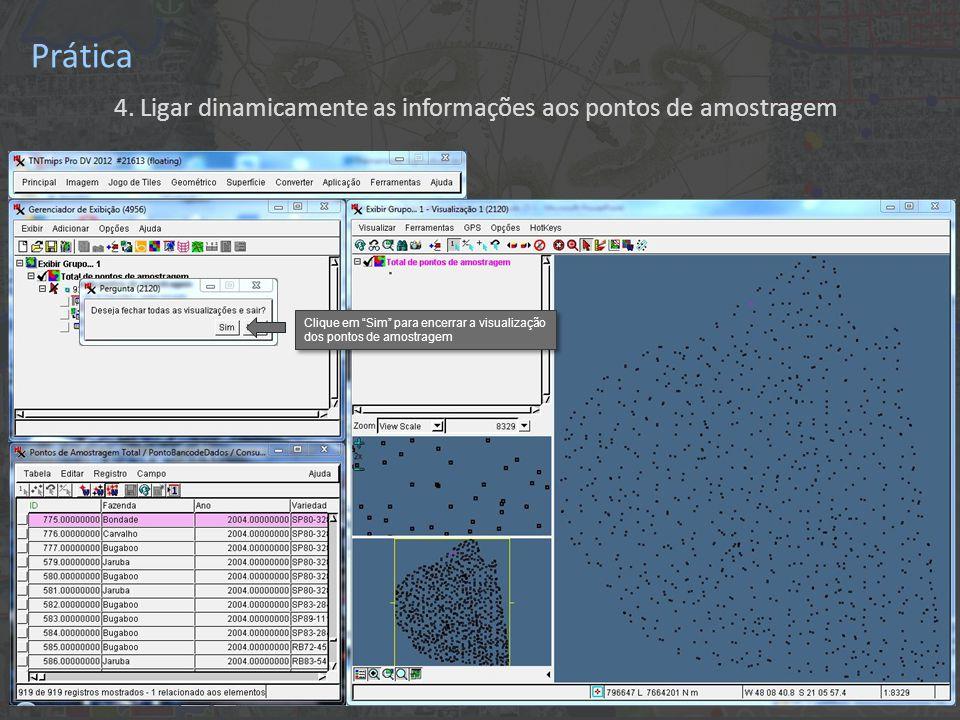 """Prática 4. Ligar dinamicamente as informações aos pontos de amostragem Clique em """"Sim"""" para encerrar a visualização dos pontos de amostragem"""