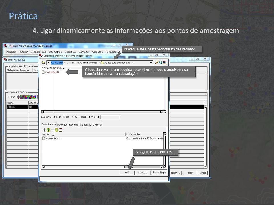 Prática 4. Ligar dinamicamente as informações aos pontos de amostragem Clique duas vezes em seguida no arquivo para que o arquivo fosse transferido pa