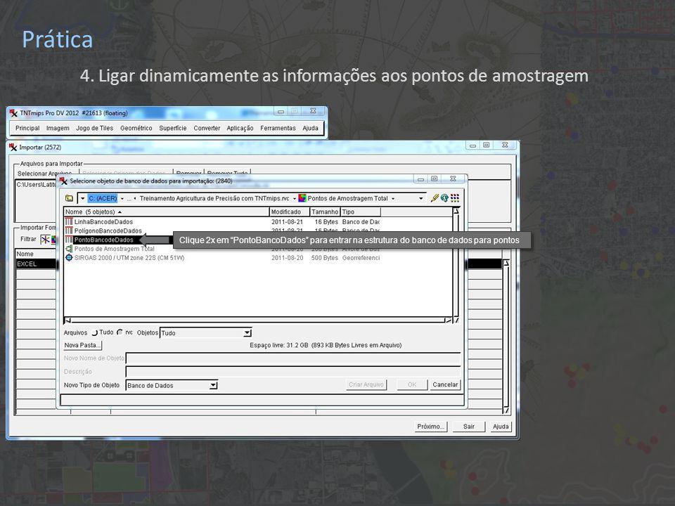 """Prática 4. Ligar dinamicamente as informações aos pontos de amostragem Clique 2x em """"PontoBancoDados"""" para entrar na estrutura do banco de dados para"""