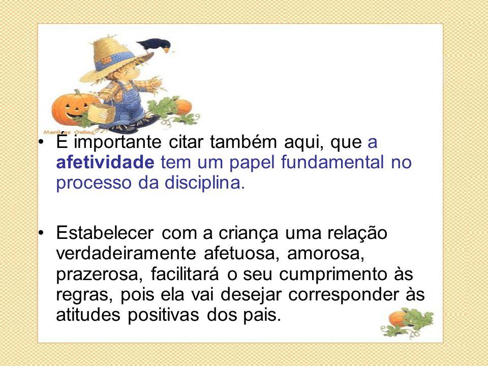 •É importante citar também aqui, que a afetividade tem um papel fundamental no processo da disciplina. •Estabelecer com a criança uma relação verdadei