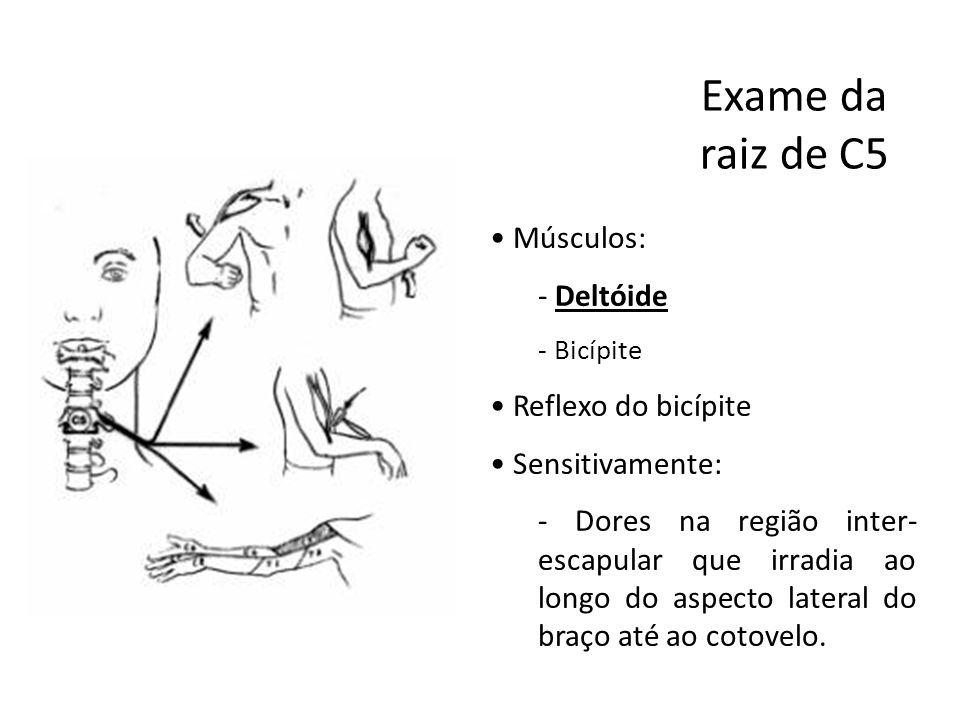 Exame da raiz de C5 • Músculos: - Deltóide - Bicípite • Reflexo do bicípite • Sensitivamente: - Dores na região inter- escapular que irradia ao longo