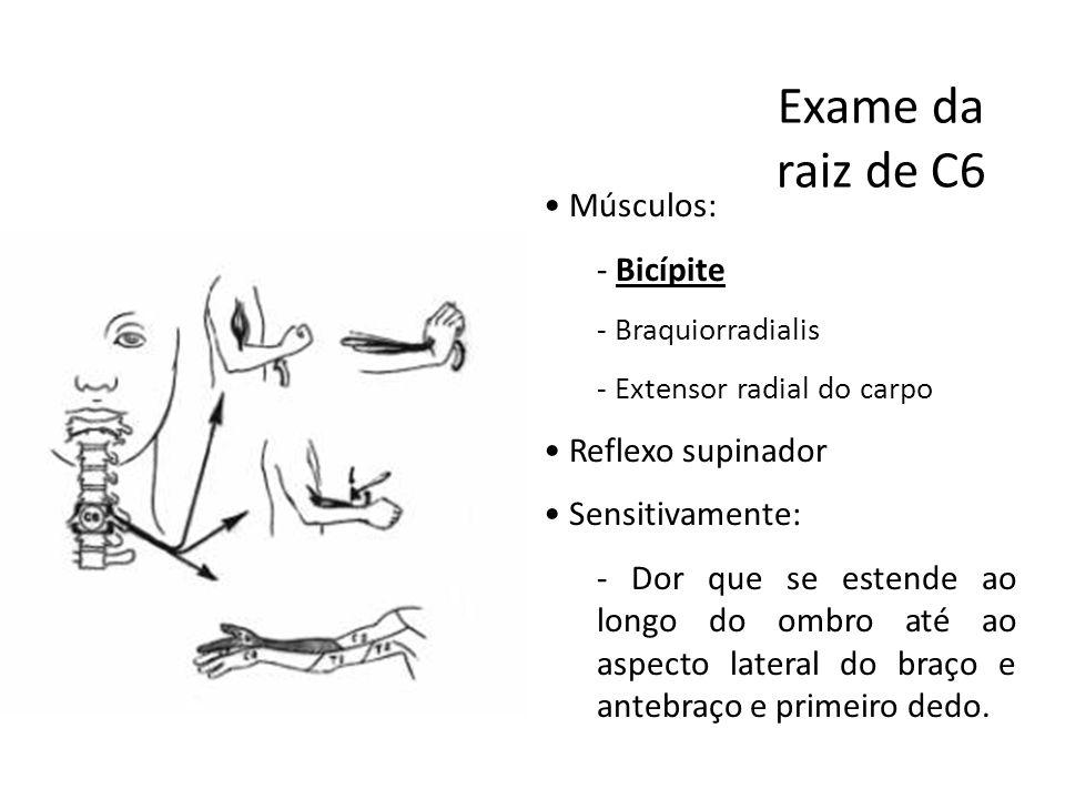 Exame da raiz de C6 • Músculos: - Bicípite - Braquiorradialis - Extensor radial do carpo • Reflexo supinador • Sensitivamente: - Dor que se estende ao