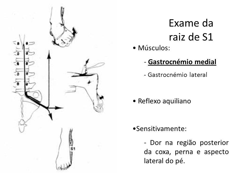 Exame da raiz de S1 • Músculos: - Gastrocnémio medial - Gastrocnémio lateral • Reflexo aquiliano •Sensitivamente: - Dor na região posterior da coxa, p