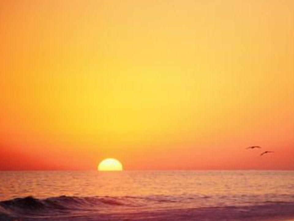 Todo mundo lhe diz para ser comedido. Por que? Se a vida é tão curta, por que ser comedido? Salte o mais alto que puder… dance com toda a sua energia!