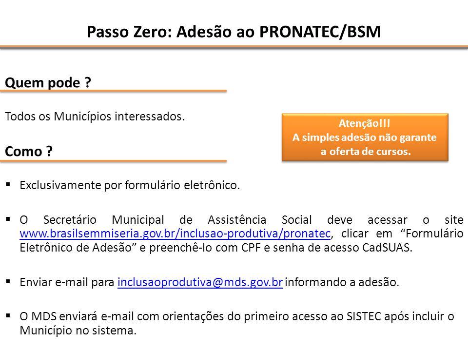Passo Zero: Adesão ao PRONATEC/BSM Quem pode .Todos os Municípios interessados.