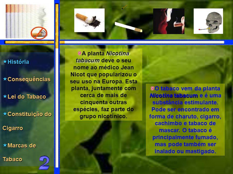 O tabaco vem da planta Nicotina Nicotina tabacum tabacum e é uma substância estimulante.