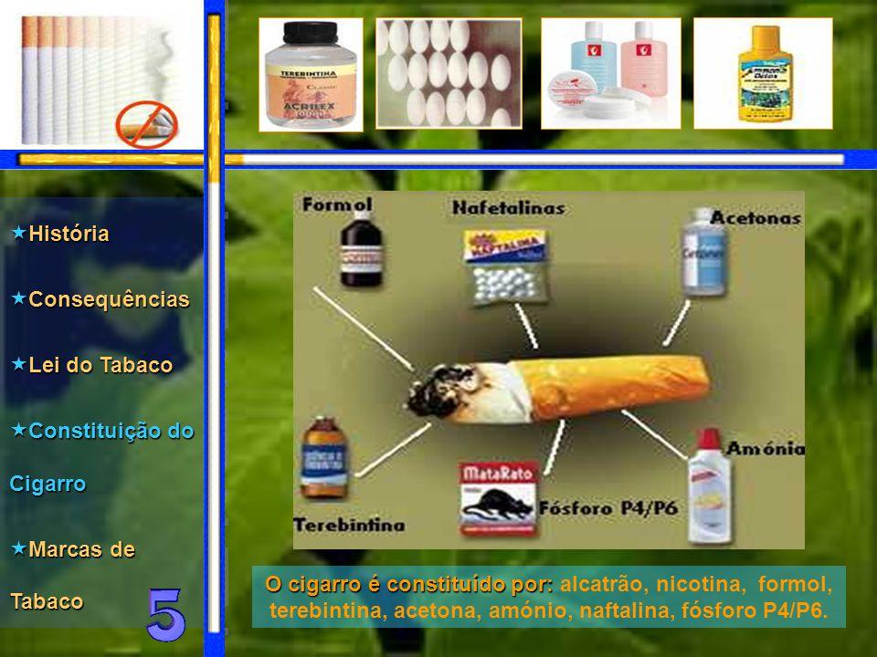 O cigarro é constituído por: por: alcatrão, nicotina, formol, terebintina, acetona, amónio, naftalina, fósforo P4/P6.