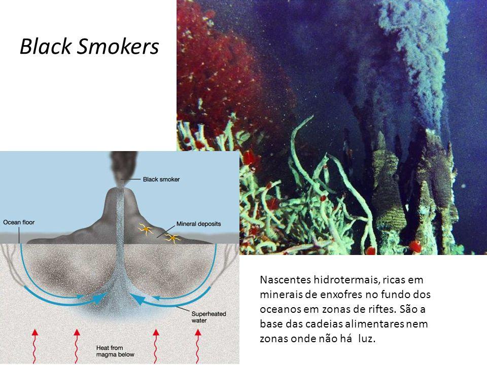 Black Smokers Nascentes hidrotermais, ricas em minerais de enxofres no fundo dos oceanos em zonas de riftes. São a base das cadeias alimentares nem zo