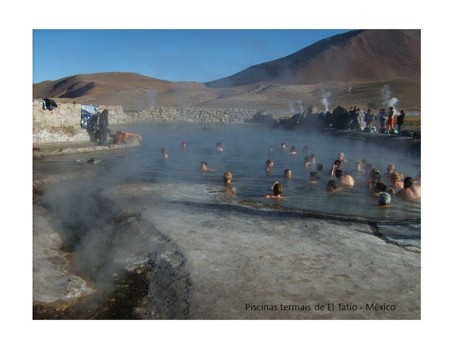 Macacos da neve nas piscinas termais junto do vulcão Fuji