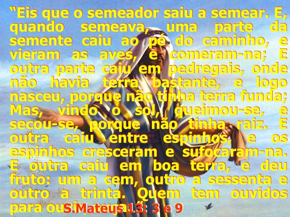 E outra caiu entre espinhos, e os espinhos cresceram e sufocaram- na.. E outra caiu entre espinhos, e os espinhos cresceram e sufocaram- na.. S.Mateus 13: 7 S.Mateus 13: 7