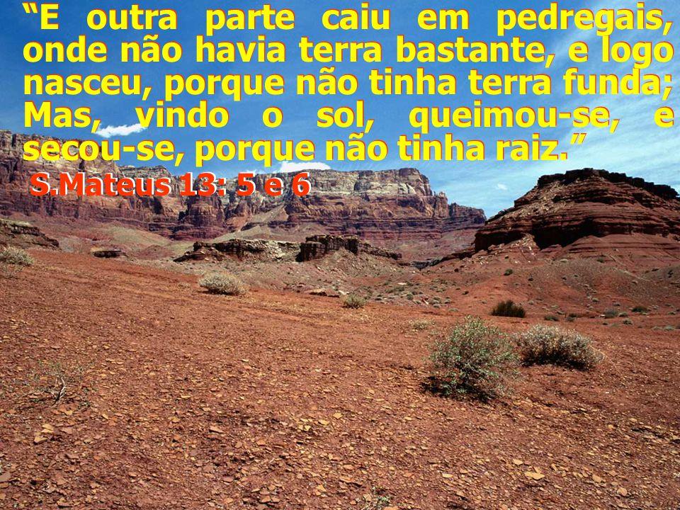 E vos tomarei dentre os gentios, e vos congregarei de todas as terras, e vos trarei para a vossa terra.