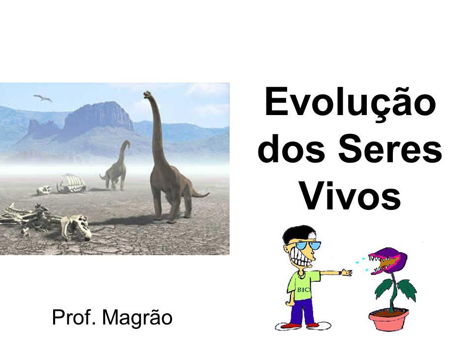 Evolução dos Seres Vivos Prof. Magrão