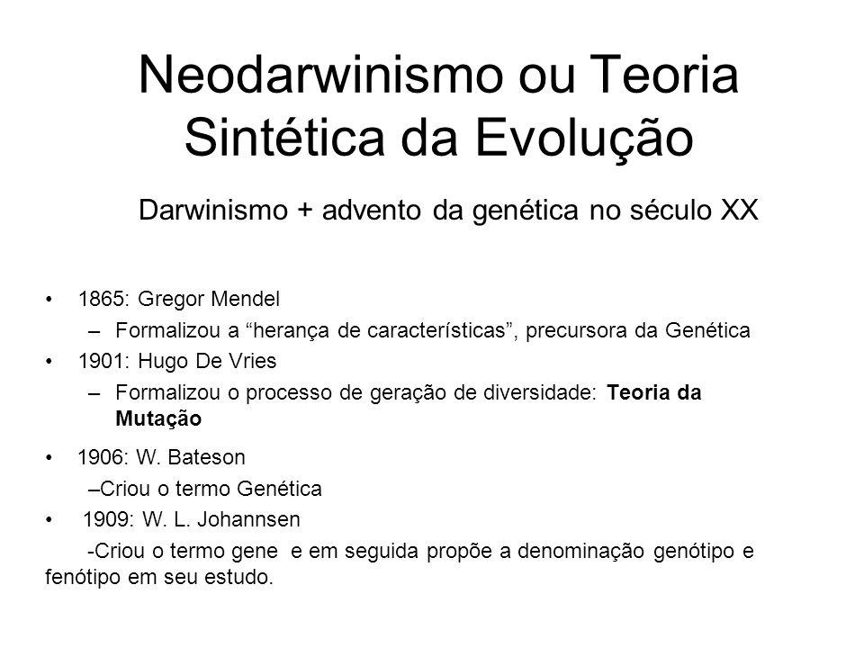 Neodarwinismo ou Teoria Sintética da Evolução •1865: Gregor Mendel –Formalizou a herança de características , precursora da Genética •1901: Hugo De Vries –Formalizou o processo de geração de diversidade: Teoria da Mutação • 1906: W.