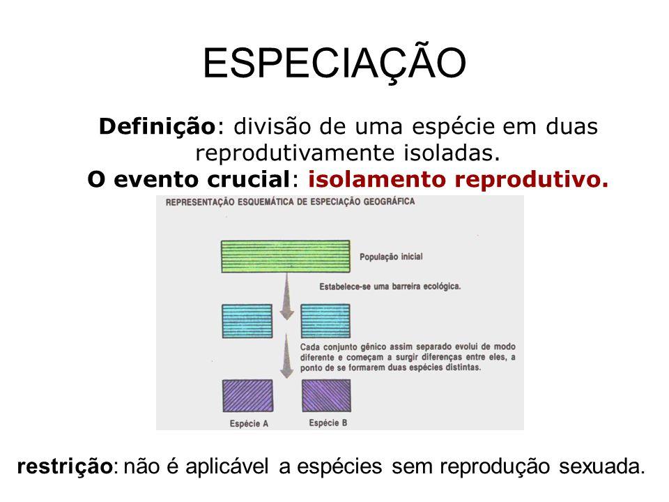 ESPECIAÇÃO Definição: divisão de uma espécie em duas reprodutivamente isoladas. O evento crucial: isolamento reprodutivo. restrição: não é aplicável a