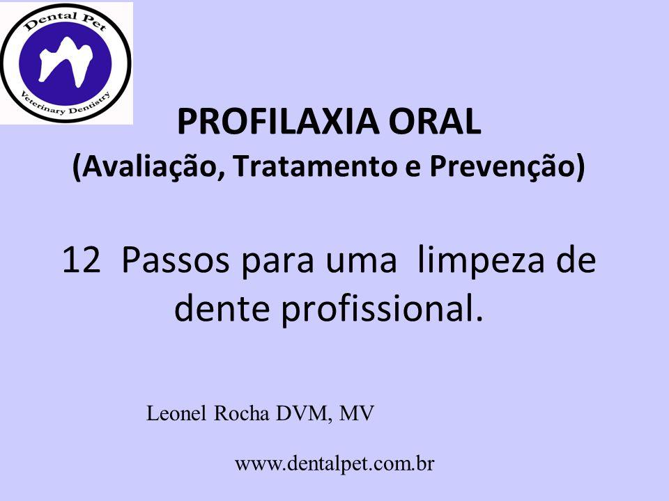 PROFILAXIA ORAL (Avaliação, Tratamento e Prevenção) 12 Passos para uma limpeza de dente profissional. Leonel Rocha DVM, MV www.dentalpet.com.br