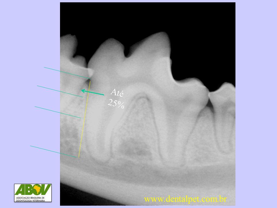 Até 25% DP2 Perda óssea até 25% www.dentalpet.com.br