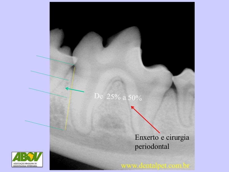 De 25% a 50% DP3 Perda óssea entre 25 e 50% Enxerto e cirurgia periodontal www.dentalpet.com.br
