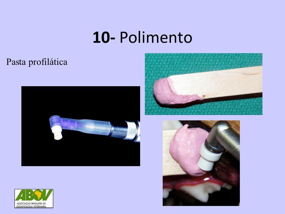 10- Polimento Pasta profilática
