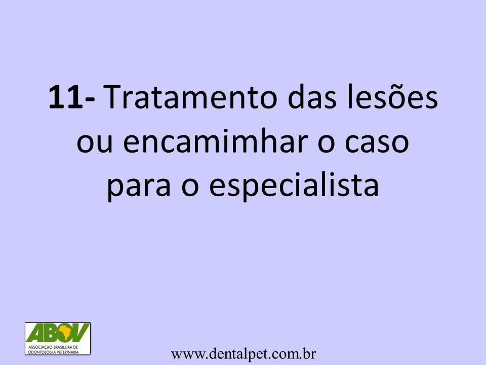 11- Tratamento das lesões ou encamimhar o caso para o especialista www.dentalpet.com.br