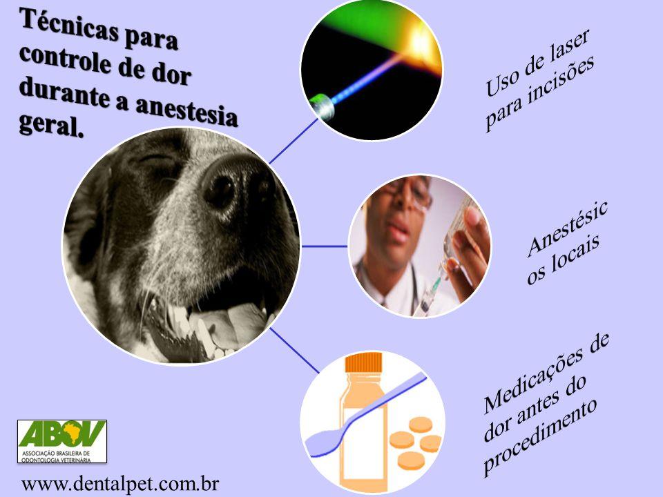 Laser Remédios em casa www.dentalpet.com.br
