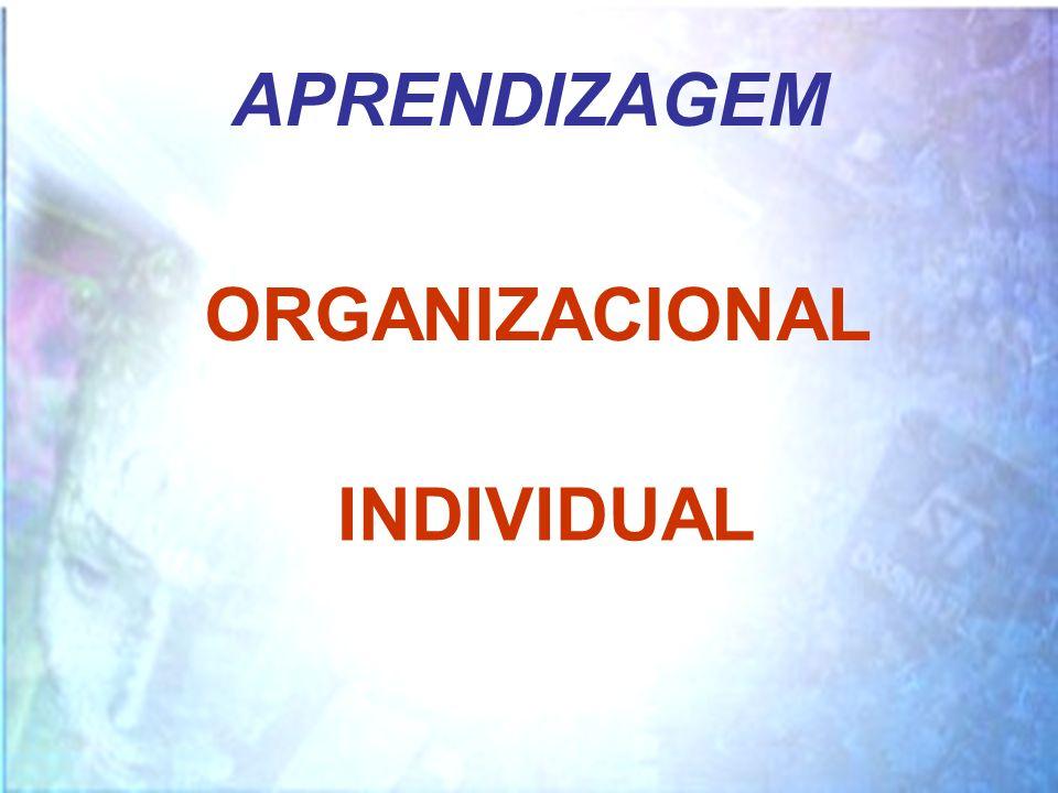 APRENDIZAGEM ORGANIZACIONAL INDIVIDUAL