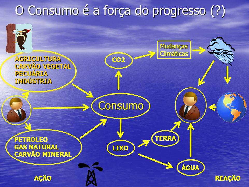 O Consumo é a força do progresso (?) Consumo LIXO CO2 TERRA ÁGUA PETROLEO GAS NATURAL CARVÃO MINERAL AGRICULTURA CARVÃO VEGETAL PECUÁRIAINDÚSTRIA Muda