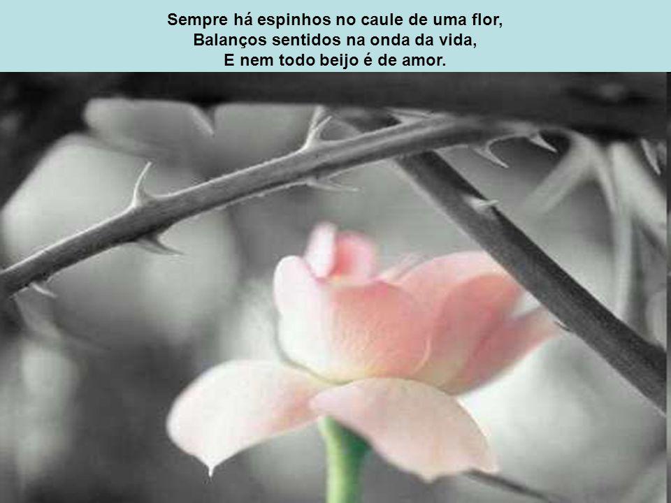 Sempre há espinhos no caule de uma flor, Balanços sentidos na onda da vida, E nem todo beijo é de amor.