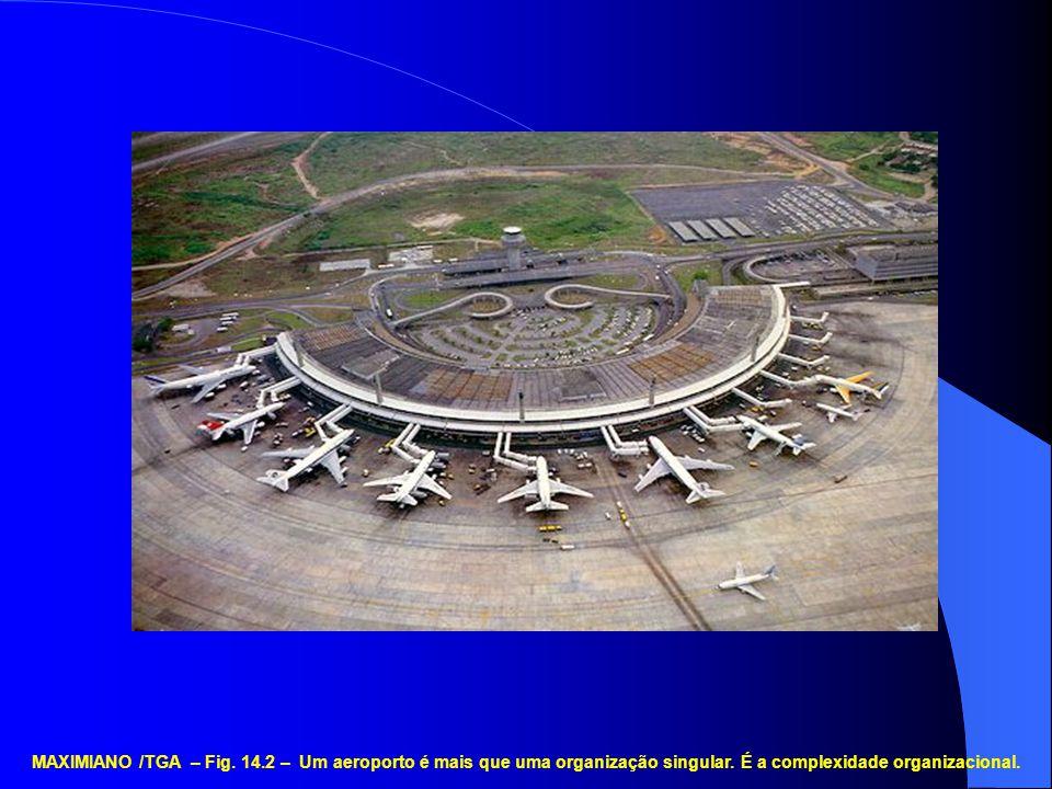 MAXIMIANO /TGA – Fig. 14.2 – Um aeroporto é mais que uma organização singular. É a complexidade organizacional.