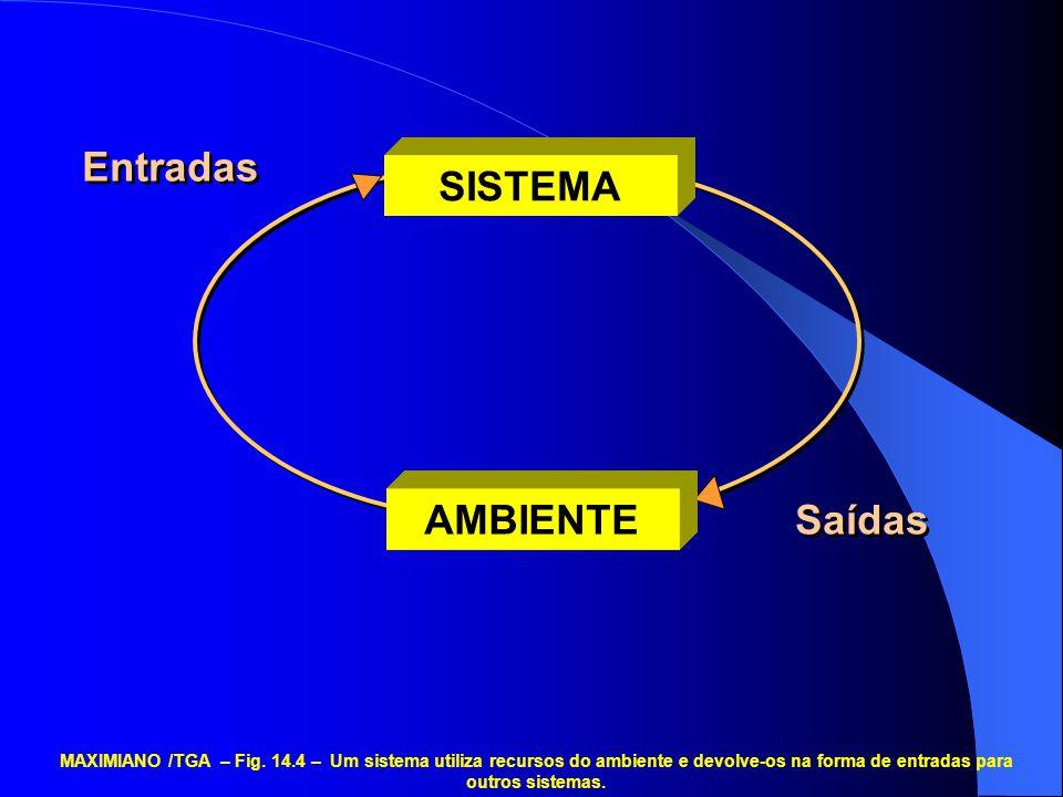 AMBIENTE SISTEMA Entradas Saídas MAXIMIANO /TGA – Fig. 14.4 – Um sistema utiliza recursos do ambiente e devolve-os na forma de entradas para outros si