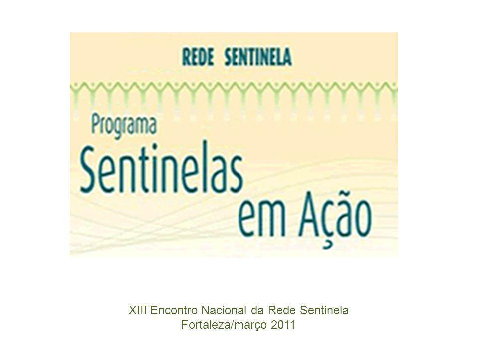 XIII Encontro Nacional da Rede Sentinela Fortaleza/março 2011