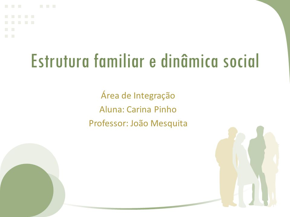 Estrutura familiar e dinâmica social Área de Integração Aluna: Carina Pinho Professor: João Mesquita