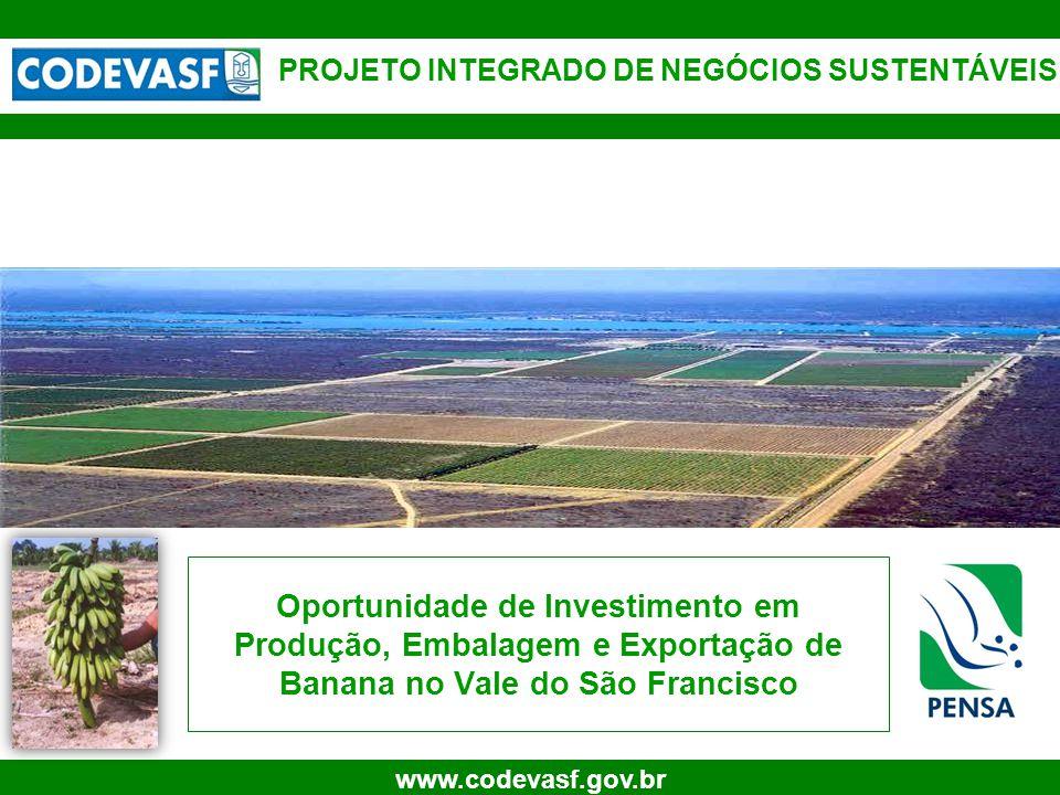 1 www.codevasf.gov.br Oportunidade de Investimento em Produção, Embalagem e Exportação de Banana no Vale do São Francisco PROJETO INTEGRADO DE NEGÓCIOS SUSTENTÁVEIS