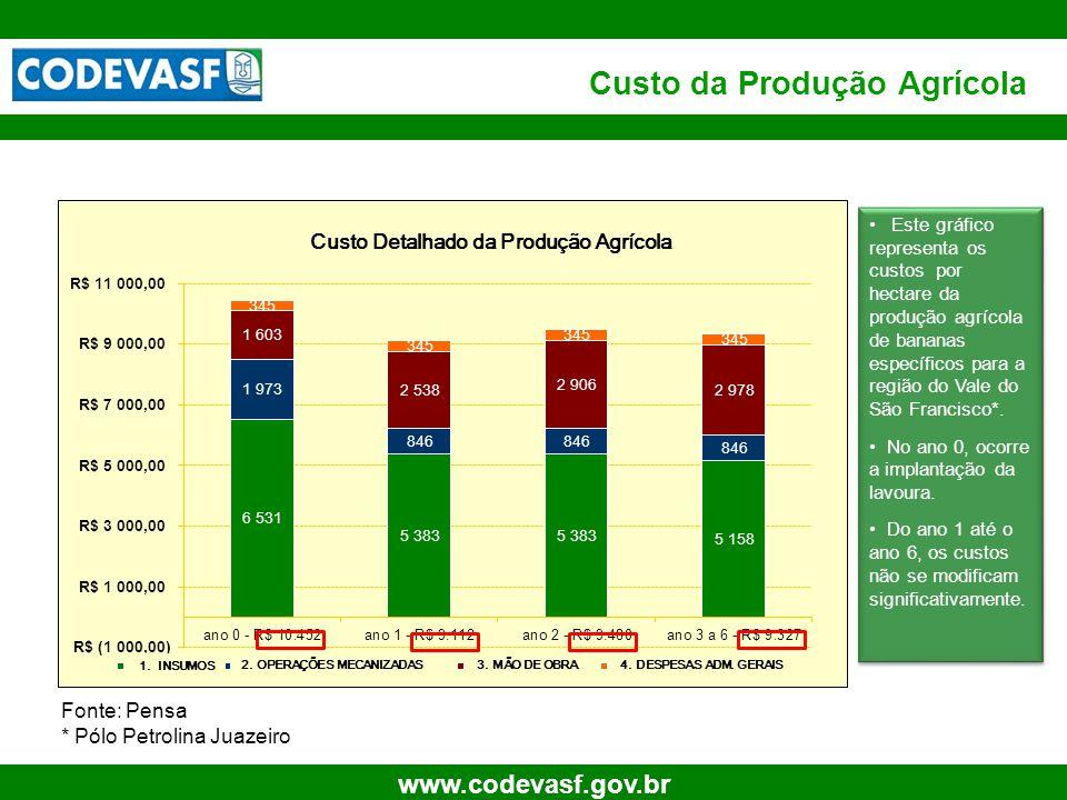 12 www.codevasf.gov.br Custo da Produção Agrícola • Este gráfico representa os custos por hectare da produção agrícola de bananas específicos para a região do Vale do São Francisco*.