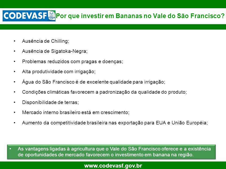 6 www.codevasf.gov.br Por que investir em Bananas no Vale do São Francisco.
