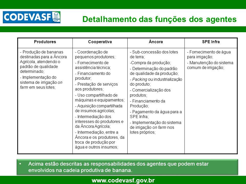 19 www.codevasf.gov.br Simulações para Sustentabilidade Econômica Fonte: PENSA Atividade AgrícolaPacking HouseCadeia Produtiva TIRm: 15,20%TIRm: 14,92%TIRm: 14,89% VPL: R$ 3.531.615VPL: R$ 8.415.236VPL: R$ 11.946.851 •Como medidas do resultado dos projetos agrícola, da Packing House e da Cadeia temos a TIRm 1 e o VPL 2.