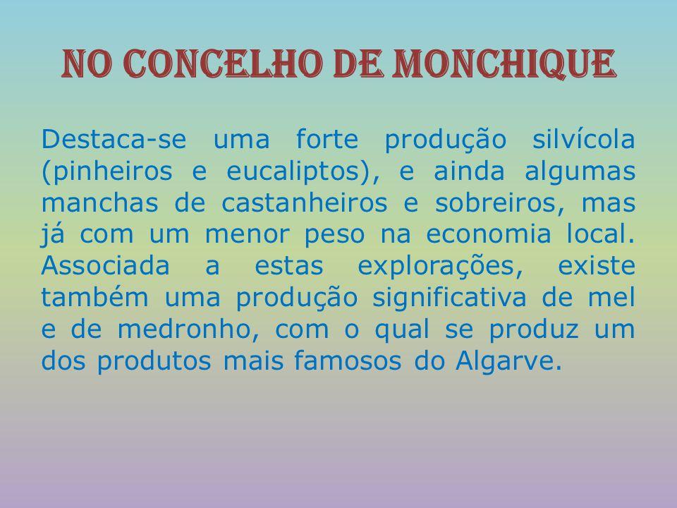 No concelho de Monchique Destaca-se uma forte produção silvícola (pinheiros e eucaliptos), e ainda algumas manchas de castanheiros e sobreiros, mas já