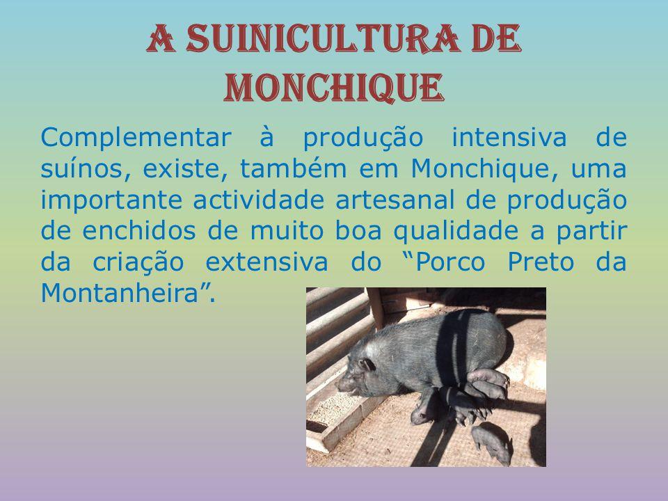A suinicultura de Monchique Complementar à produção intensiva de suínos, existe, também em Monchique, uma importante actividade artesanal de produção