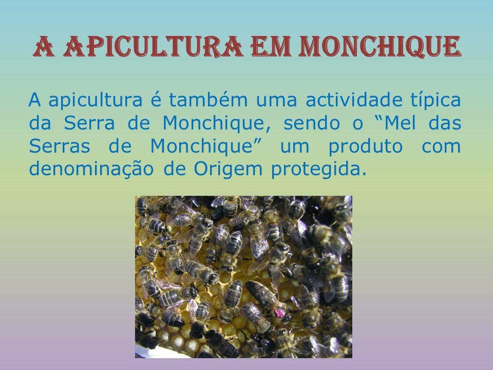 """A apicultura em Monchique A apicultura é também uma actividade típica da Serra de Monchique, sendo o """"Mel das Serras de Monchique"""" um produto com deno"""