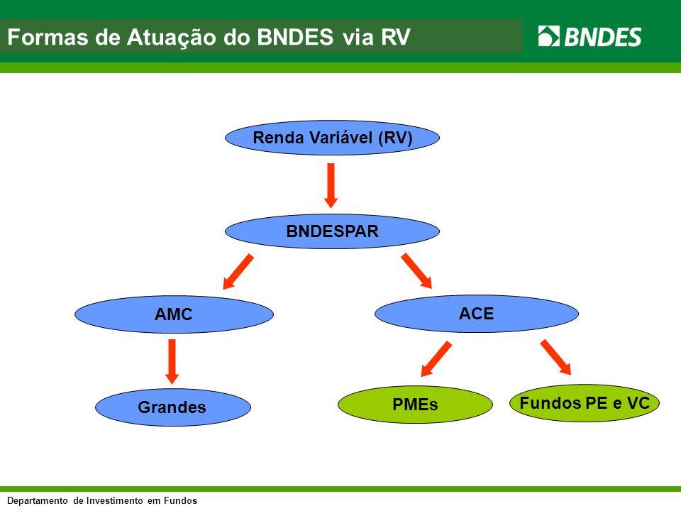 Departamento de Investimento em Fundos asfasf Renda Variável (RV) AMC ACE Formas de Atuação do BNDES via RV BNDESPAR Grandes PMEs Fundos PE e VC