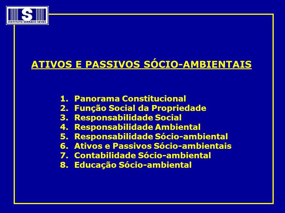 ATIVOS E PASSIVOS SÓCIO-AMBIENTAIS 1.Panorama Constitucional 2.Função Social da Propriedade 3.Responsabilidade Social 4.Responsabilidade Ambiental 5.R