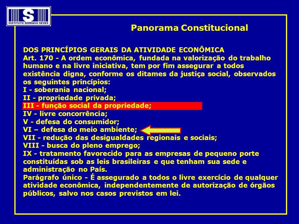 DOS PRINCÍPIOS GERAIS DA ATIVIDADE ECONÔMICA Art. 170 - A ordem econômica, fundada na valorização do trabalho humano e na livre iniciativa, tem por fi
