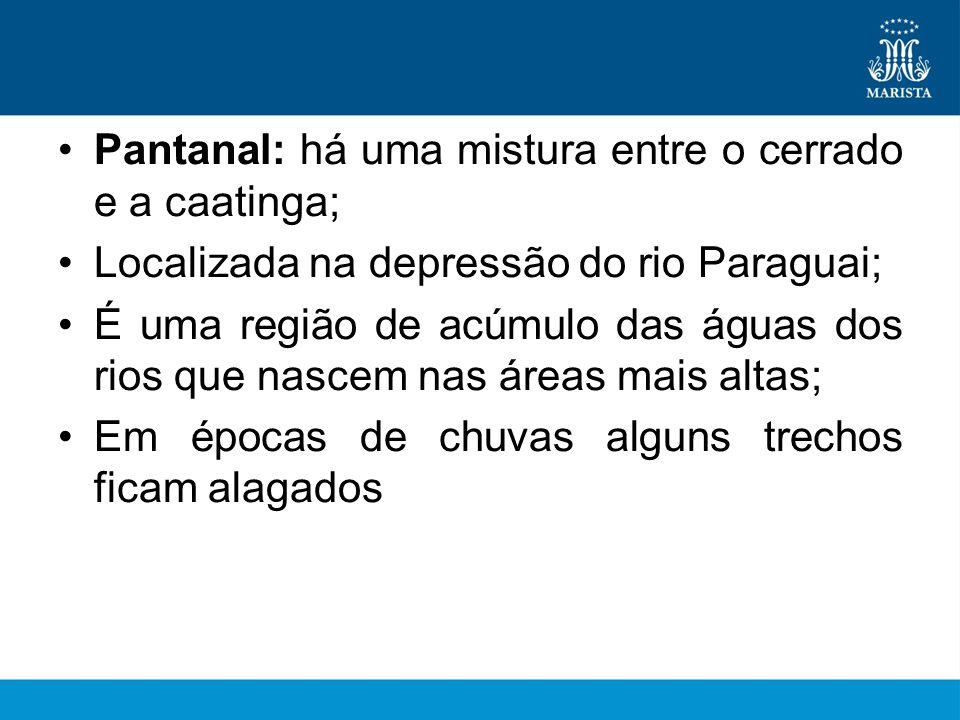 •Pantanal: há uma mistura entre o cerrado e a caatinga; •Localizada na depressão do rio Paraguai; •É uma região de acúmulo das águas dos rios que nascem nas áreas mais altas; •Em épocas de chuvas alguns trechos ficam alagados