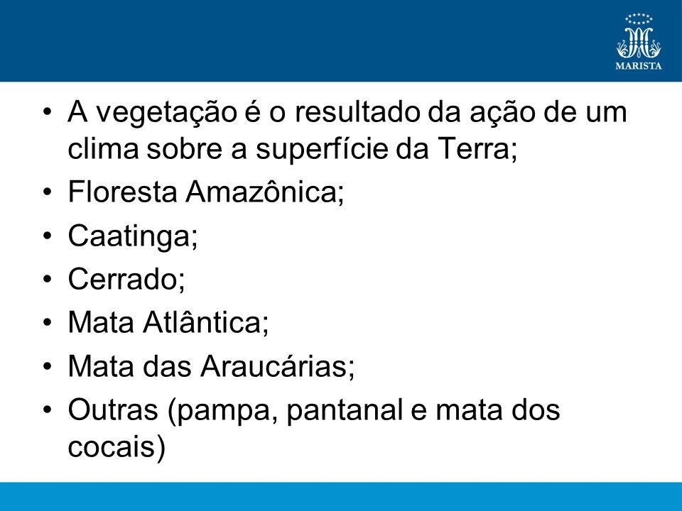 •A vegetação é o resultado da ação de um clima sobre a superfície da Terra; •Floresta Amazônica; •Caatinga; •Cerrado; •Mata Atlântica; •Mata das Araucárias; •Outras (pampa, pantanal e mata dos cocais)