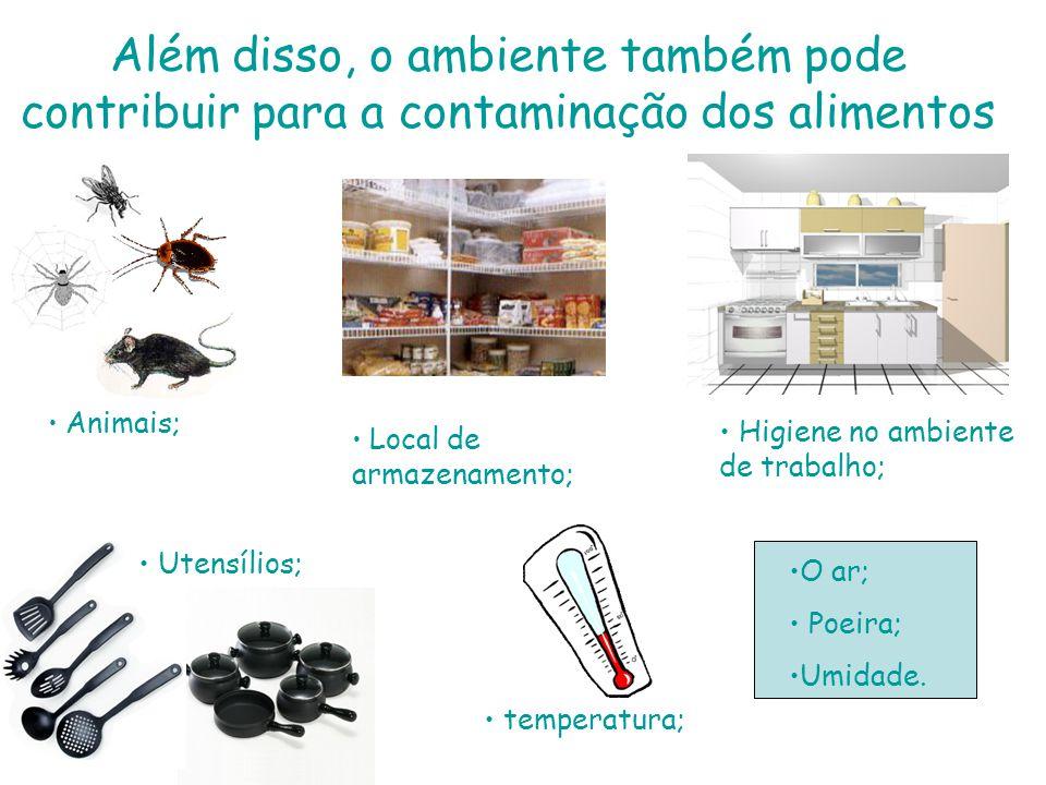 Além disso, o ambiente também pode contribuir para a contaminação dos alimentos • • temperatura; • • Utensílios; • • Higiene no ambiente de trabalho; • •O ar; • • Poeira; • •Umidade.