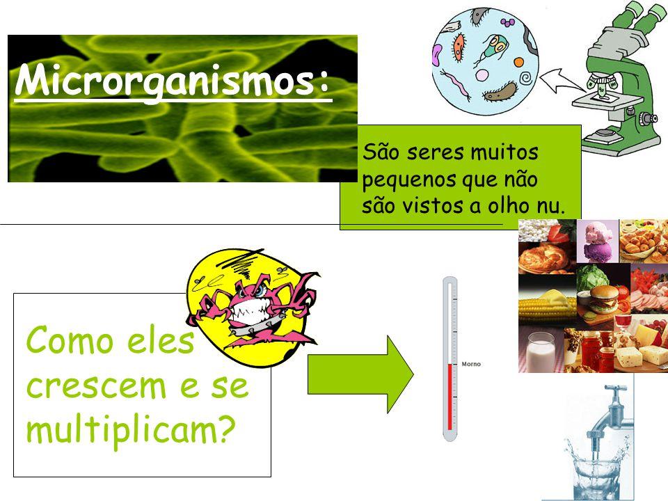Microrganismos: São seres muitos pequenos que não são vistos a olho nu.