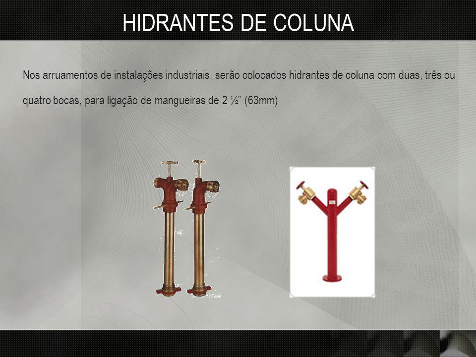 HIDRANTES DE COLUNA Nos arruamentos de instalações industriais, serão colocados hidrantes de coluna com duas, três ou quatro bocas, para ligação de ma