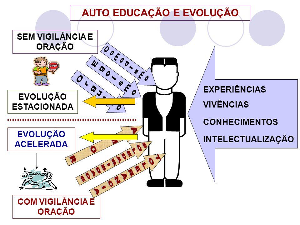 EXPERIÊNCIAS VIVÊNCIAS CONHECIMENTOS INTELECTUALIZAÇÃO AUTO EDUCAÇÃO E EVOLUÇÃO SEM VIGILÂNCIA E ORAÇÃO EVOLUÇÃO ESTACIONADA COM VIGILÂNCIA E ORAÇÃO E