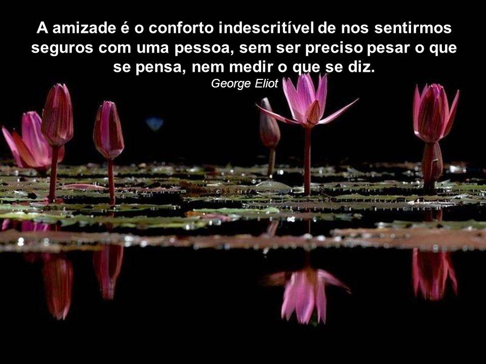 A amizade não se busca, não se sonha, não se deseja; ela exerce-se (é uma virtude). Simone Weil
